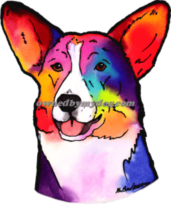 Cardigan Welsh Corgi #1