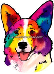 Cardigan Welsh Corgi #3