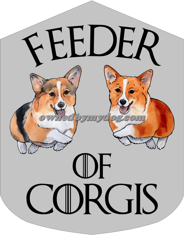 Feeder of Corgis rw try