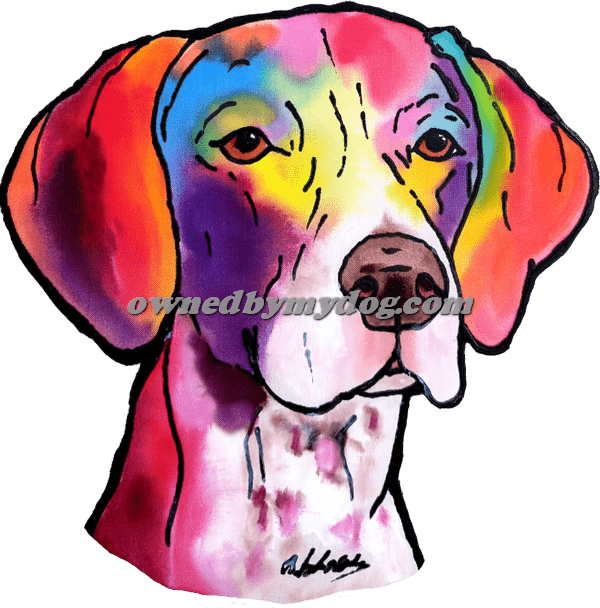 German Shorthairpointer