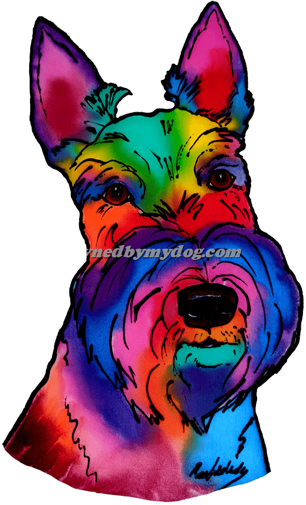 Scottish Highland Terrier 2
